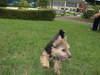 2008_0922asuka0272